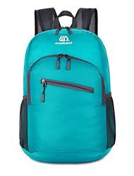 Недорогие -Жен. Мешки Нейлон рюкзак Молнии Сплошной цвет Пурпурный / Морской синий / Военно-зеленный