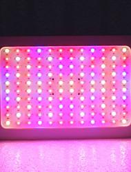 Недорогие -1 комплект 1200 W 6130 lm 120 Светодиодные бусины Полного спектра Растущие светильники Тёплый белый Белый Красный 85-265 V Деловой Дом / офис