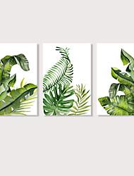Недорогие -С картинкой Отпечатки на холсте - ботанический Цветочные мотивы / ботанический Modern 3 панели Репродукции