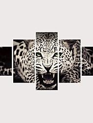 levne -Grafika Válcované plátno Reprodukce maleb na plátně - Zvířata kočičky Současný styl Moderní Pět panelů