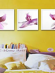 cheap -Framed Canvas Framed Set - Botanical Floral / Botanical Plastic Illustration Wall Art