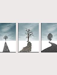 tanie -Nadruk Zwijane wydruki na płótnie - Botaniczne Nowoczesny Klasyczny Trzy panele
