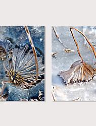 Недорогие -С картинкой Отпечатки на холсте - Фото Цветочные мотивы / ботанический Modern Репродукции