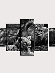 cheap -Print Rolled Canvas Prints - Abstract Animals Classic Modern Five Panels