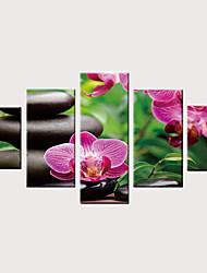 billige -Trykk Valset lerretskunst Strukket Lerret Trykk - Moderne Blomstret / Botanisk Vintage Moderne Fem Paneler