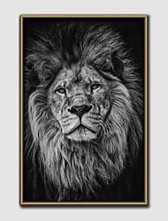 cheap -Framed Art Print Framed Canvas - Animals Plastic Illustration Wall Art