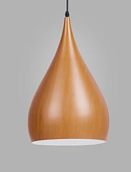 Недорогие -шишка / промышленные Подвесные лампы Потолочный светильник Окрашенные отделки Металл Новый дизайн 110-120Вольт / 220-240Вольт