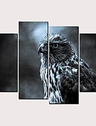abordables -Estampado Laminados en lienzo - Abstracto Animales Clásico Modern Cuatro Paneles