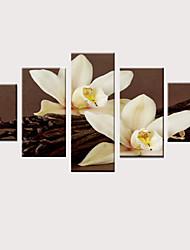preiswerte -Druck Gerollte Leinwand Aufgespannte Leinwandrucke - Modern Blumenmuster / Botanisch Klassisch Modern Fünf Panele