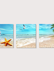 povoljno -Print Stretched Canvas Prints - Plaža Teme Photographic Moderna Tri plohe