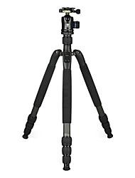 Недорогие -LITBest N2204SK+K20X Назначение 173 cm На открытом воздухе Трипод Записывающая камера