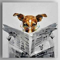 olajfestmény modern absztrakt az újságot olvasó kutya kézzel festett vászon feszített keret