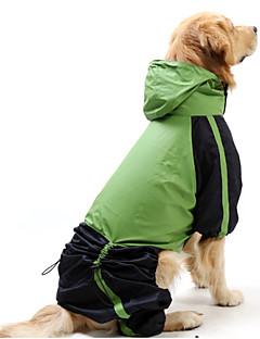 저렴한 -고양이 강아지 레인 코트 강아지 의류 방수 방풍 컬러 블럭 레드 그린