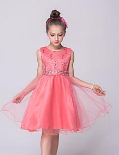 tanie Odzież dla dziewczynek-Sukienka Bawełna Dziewczyny Lato Bez rękawów Koronka Gray Czerwony Green Niebieski Fuksja