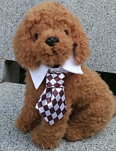 billiga Hundkläder-Katt Hund Knyta/Fluga Hundkläder Svart Kaffe Röd Grön Regnbåge Terylen Kostym För husdjur Herr Cosplay Bröllop