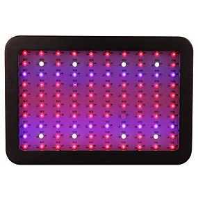 cheap LED Indoor Lights-10000 lm 100 LED Beads Easy Install Growing Light Fixture Natural White Red Blue 85-265 V