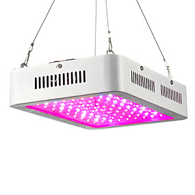 preiswerte LED Pflanzenlampe-280 W Wachsende Leuchte 200-2300 lm 100 LED-Perlen Hochleistungs - LED Warmes Weiß Rot Blau 85-265 V / 1 Stück / RoHs / CCC