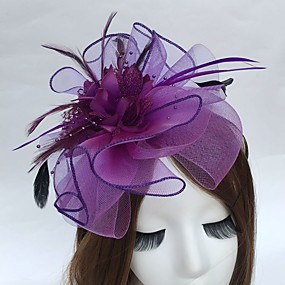 cheap Daily Deals-Feather / Net Headbands / Fascinators with 1 Wedding / Party / Evening Headpiece