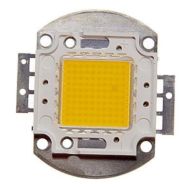 8000-9000 LED Chip Aluminium 100W