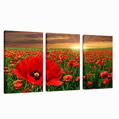 Abstrakti Maisema Leisure Valokuvaus Patriotismi Moderni Romantiikka Pop Art Matkailu 3 paneeli Pysty Wall Decor For Kodinsisustus