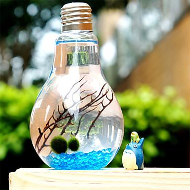 Basit mikro manzara cam şişe yosun ekolojik peyzaj bitkileri yaratıcı saksı doğum Sevgililer Günü hediye