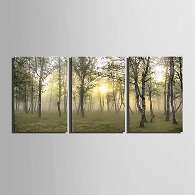 Canvas Set Landskab Europæisk Stil,Tre Paneler Canvas Vertikal Print Art Wall Decor For Hjem Dekoration