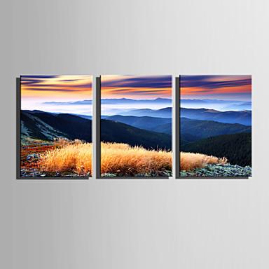 Canvas Set Maisema Moderni,3 paneeli Kanvas Pystysuora Tulosta Art Wall Decor For Kodinsisustus