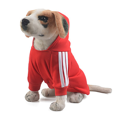 Hund Hettegensere / Kjeledresser Hundeklær Ensfarget Rød / Blå / Rosa Bomull Kostume For kjæledyr Herre / Dame Hold Varm / Sport