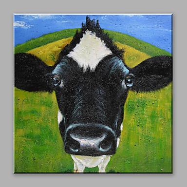 Pintados à mão Animais Quadrada, Abstracto Tela de pintura Pintura a Óleo Decoração para casa 1 Painel