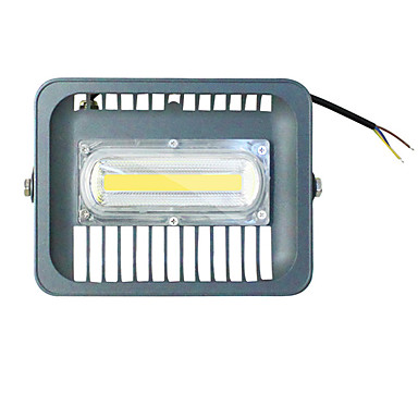 50 W LED Floodlight Waterproof Cold White 220 V Outdoor Lighting / Lawn 1 LED Beads