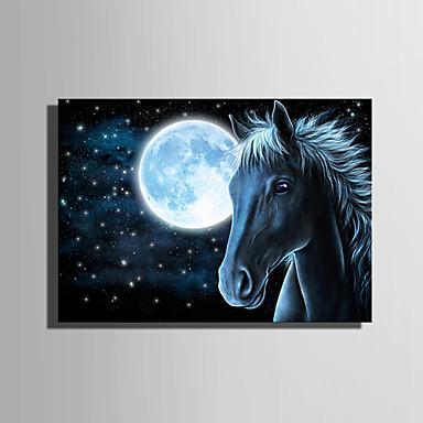 LED Kanvas Sanat Manzara Hayvanlar Tek Panelli Dikey Boyama Duvar Dekor Ev dekorasyonu