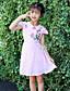 levne Dívčí šaty-Dívka je Bavlna Výšivka Léto Šaty,Krátký rukáv