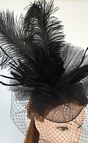 Tulle Plume Filet Fascinators Coiffure Voiles Birdcage with Fleur 1pc Mariage Occasion spéciale Décontracté Casque