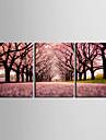 Stretchad Kanvastryck Kanvas set Landskap Tre paneler Horisontell Tryck väggdekor Hem-dekoration