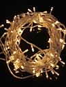 10m Fâșii de Iluminat 100 LED-uri Alb Cald 220 V