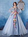 Haine Bal Prințesă Gât V Trenă Capelă Satin Tulle Seară Formală Rochie cu Flori de Embroidered Bridal