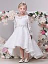 A-Line Asymmetrical Flower Girl Dress - Lace Long Sleeves Jewel Neck with Lace by LAN TING Express