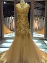Trompetă / Sirenă Iluzii Trenă Court Lace Over Tulle Seară Formală Rochie cu Paiete Aplică de TS Couture®