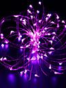 10m 100 condus de sârmă de cupru condus de lumină șir de lumină stelelight adaptor de alimentare (uuzul ukuseuau) festival de lumină