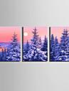 Paysage A fleurs/Botanique Moderne,Trois Panneaux Toile Verticale Imprimer Art Decoration murale For Decoration d\'interieur