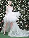 Prințesă In Formă de Inimă Asimetric Dantelă Tulle Rochie de mireasă cu Mărgele Paiete Dantelă de QZ