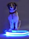 Câine Lese Siguranță Bliț Mată Terilenă Galben Rosu Verde Albastru Roz