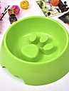 Pisici Câine Boluri & Sticle de Apă Animale de Companie  Castroane & Hrănirea Durabil Maro Verde Albastru Roz