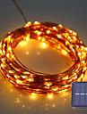 HKV Ljusslingor 100 lysdioder Varmvit Kallvit Grön Blå Röd Vattentät <5V