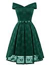 Pentru femei Ieșire Vintage Zvelt Swing Rochie Mată De Pe Umăr / V Adânc Talie Înaltă Lungime Genunchi / Primăvară / Vară / Dantelă
