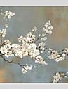 Hang målad oljemålning HANDMÅLAD - Blommig/Botanisk Moderna