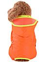 Hund Regnjacka Hundkläder Enfärgad Gul Röd Grön Blå Rosa Nylon Kostym För husdjur Herr Dam Vattentät