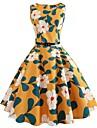 Pentru femei Vintage Swing Rochie - Imprimeu, Floral Lungime Genunchi