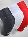 Knästöd för Basket Cykel Löpning Stöttålig Herr Lycra Spandex 1 st Sport Vit Svart Röd