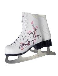 아이스 스케이트